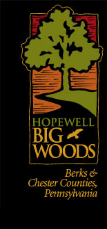 Hopewell Big Woods